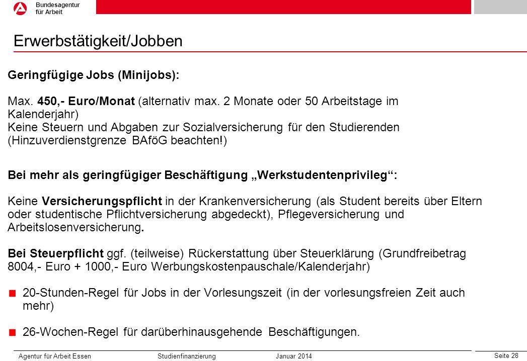 Erwerbstätigkeit/Jobben