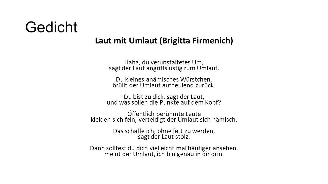 Laut mit Umlaut (Brigitta Firmenich)