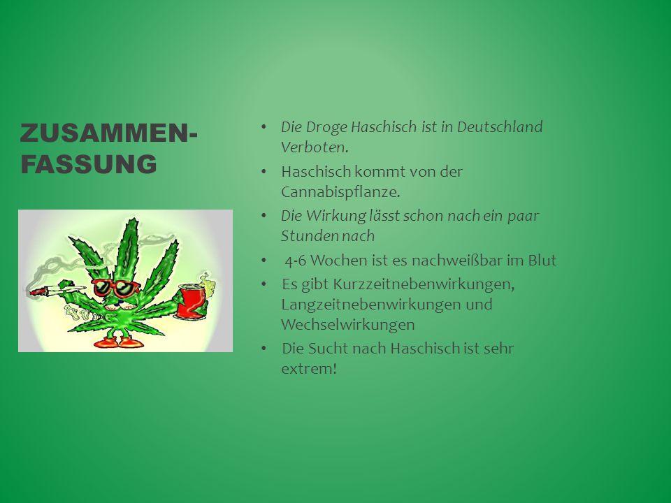 Zusammen-fassung Die Droge Haschisch ist in Deutschland Verboten.