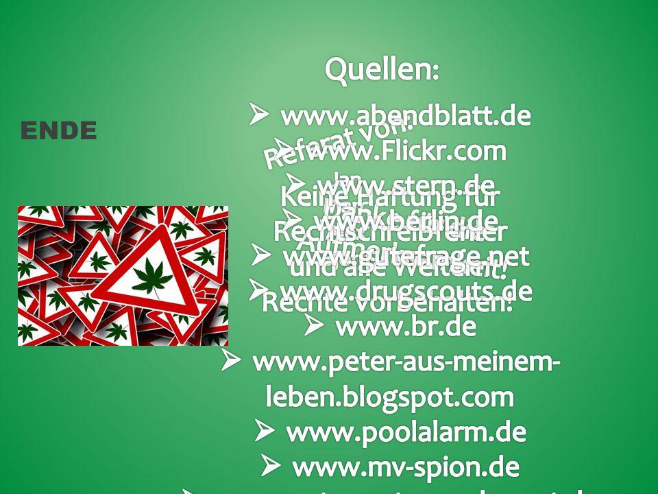 Quellen: www.abendblatt.de Referat von: www.Flickr.com www.stern.de