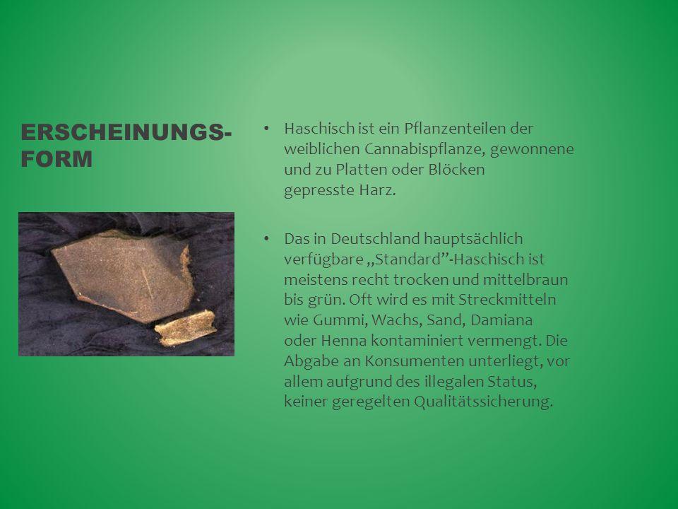Erscheinungs-form Haschisch ist ein Pflanzenteilen der weiblichen Cannabispflanze, gewonnene und zu Platten oder Blöcken gepresste Harz.