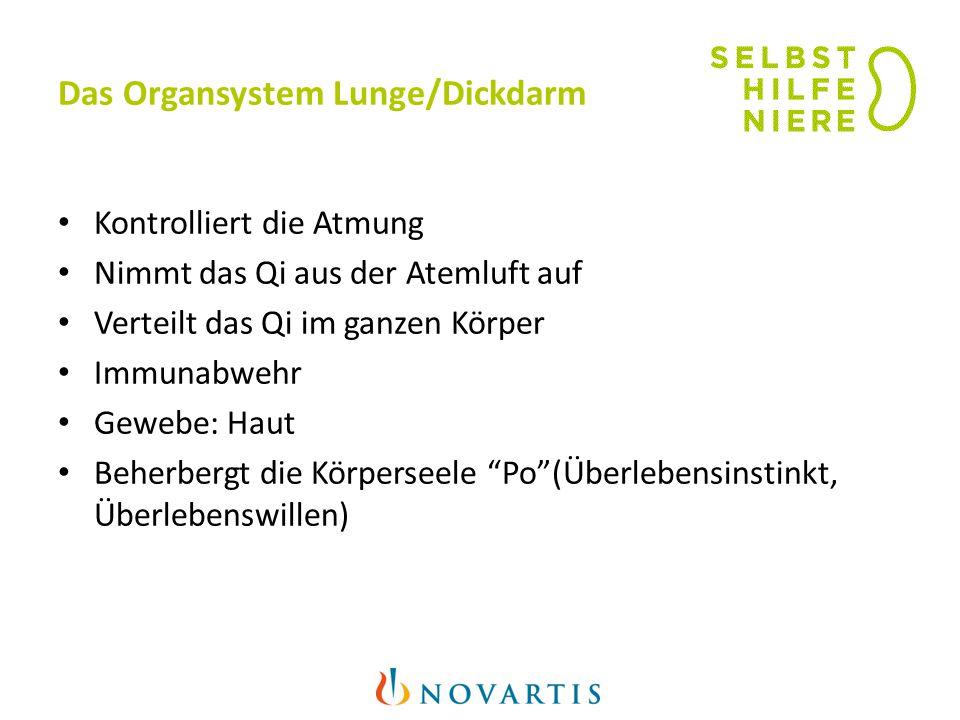 Das Organsystem Lunge/Dickdarm