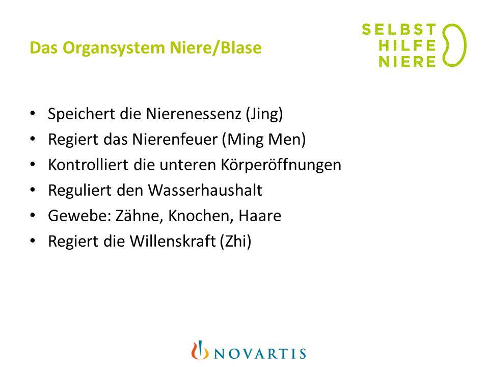 Das Organsystem Niere/Blase