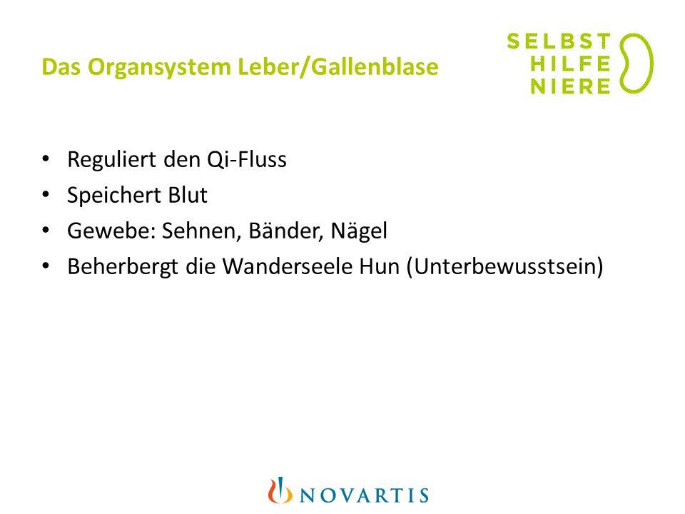 Das Organsystem Leber/Gallenblase