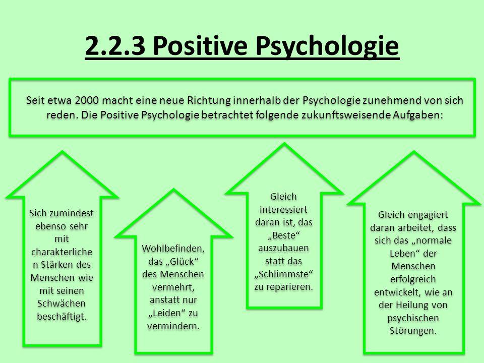 2.2.3 Positive Psychologie