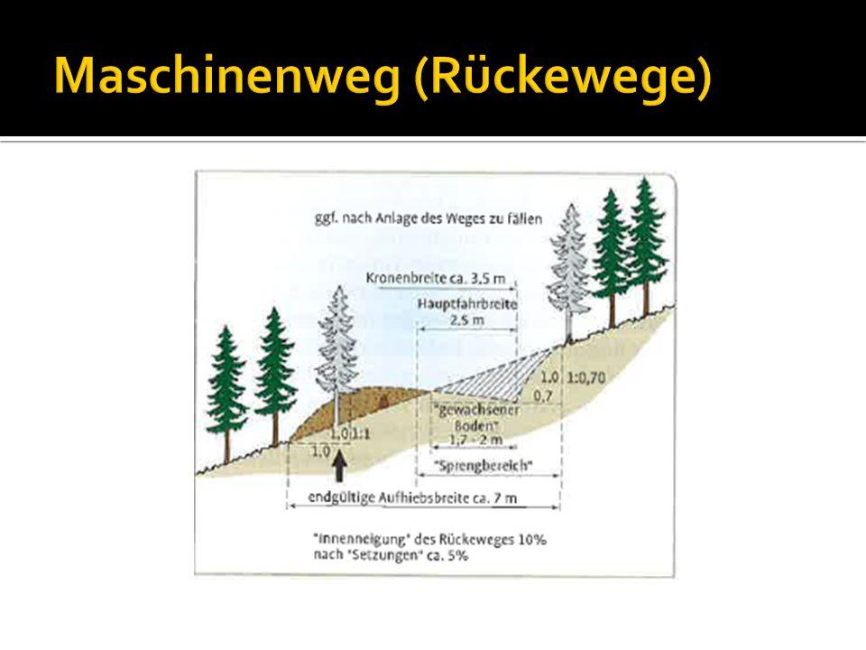 Maschinenweg (Rückewege)