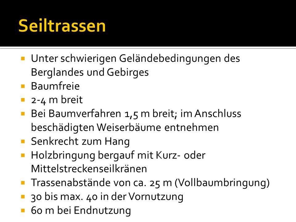Seiltrassen Unter schwierigen Geländebedingungen des Berglandes und Gebirges. Baumfreie. 2-4 m breit.
