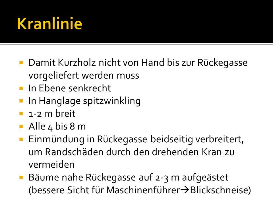 Kranlinie Damit Kurzholz nicht von Hand bis zur Rückegasse vorgeliefert werden muss. In Ebene senkrecht.