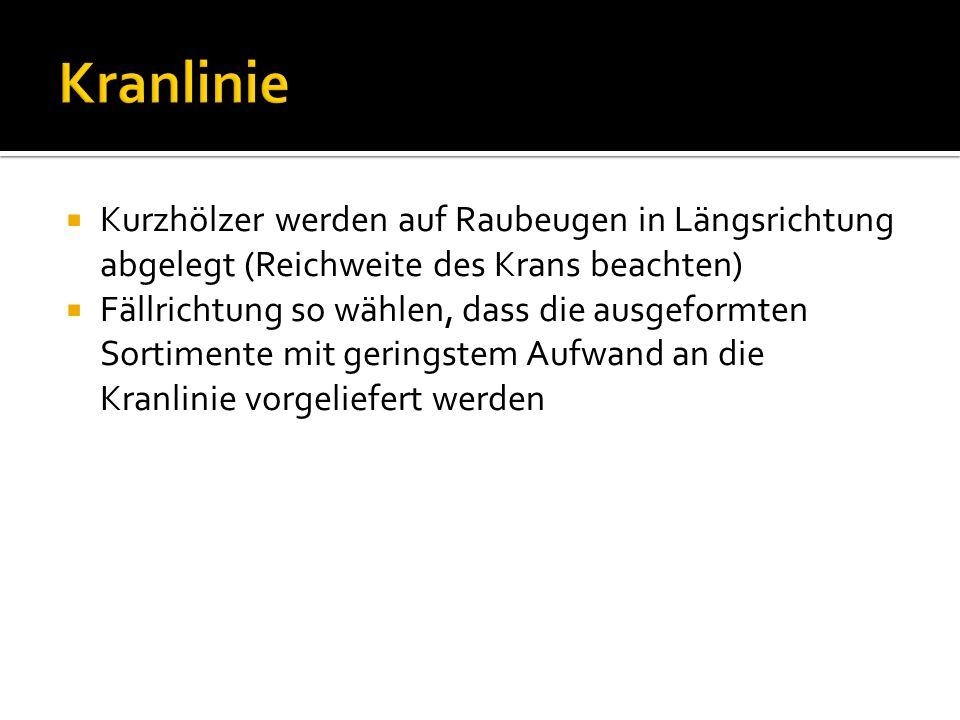 Kranlinie Kurzhölzer werden auf Raubeugen in Längsrichtung abgelegt (Reichweite des Krans beachten)