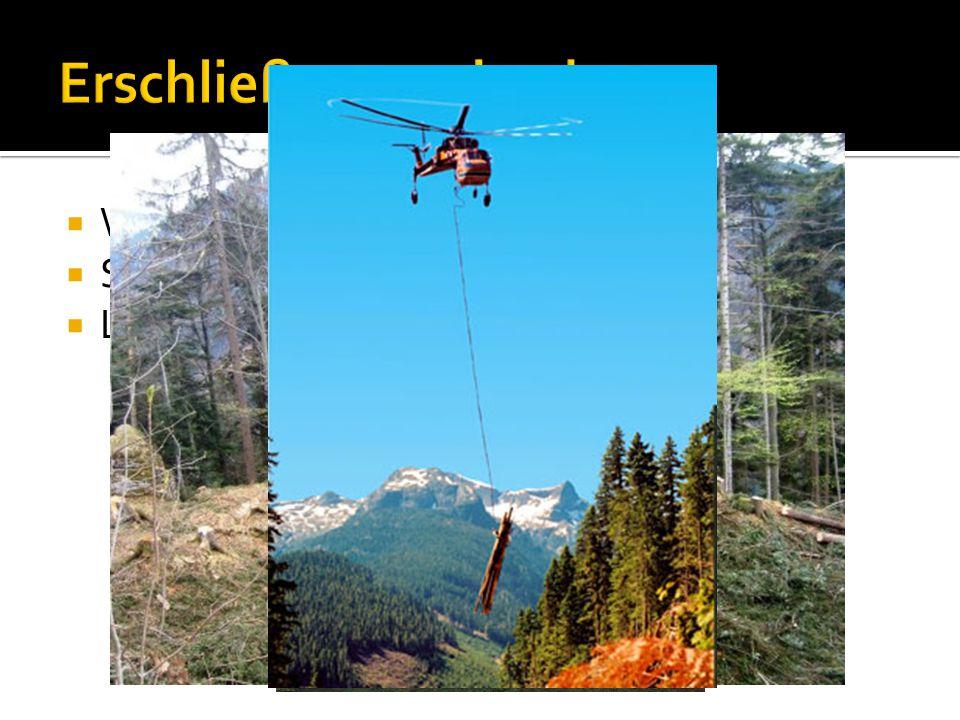 Erschließungsmittel Waldwege Seilanlagen Luftfahrzeuge