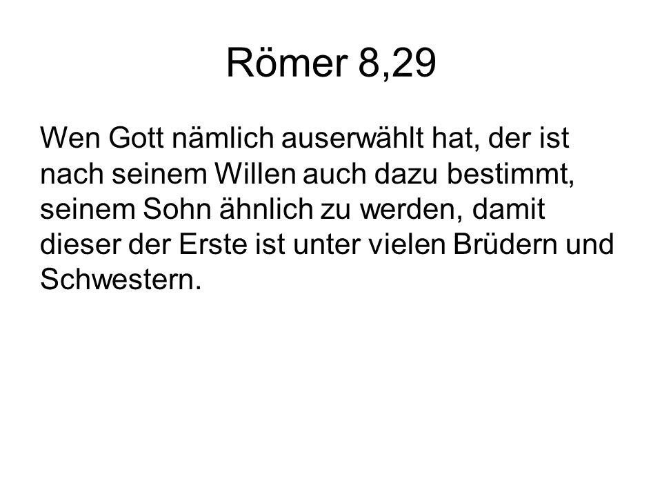 Römer 8,29