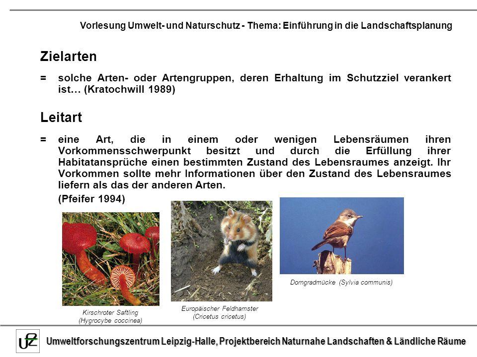 Zielarten = solche Arten- oder Artengruppen, deren Erhaltung im Schutzziel verankert ist… (Kratochwill 1989)