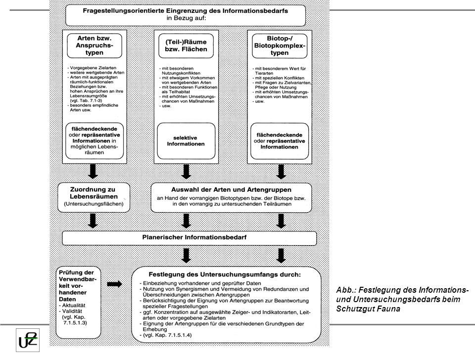 Abb.: Festlegung des Informations- und Untersuchungsbedarfs beim Schutzgut Fauna
