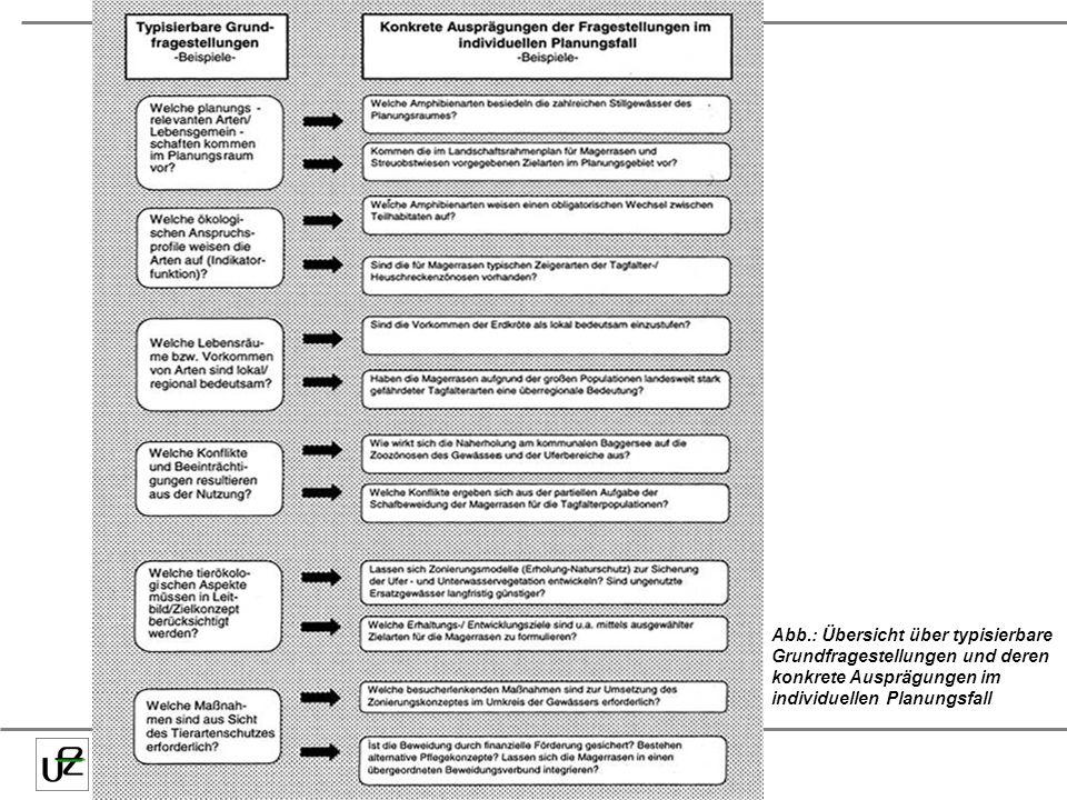 Abb.: Übersicht über typisierbare Grundfragestellungen und deren konkrete Ausprägungen im individuellen Planungsfall