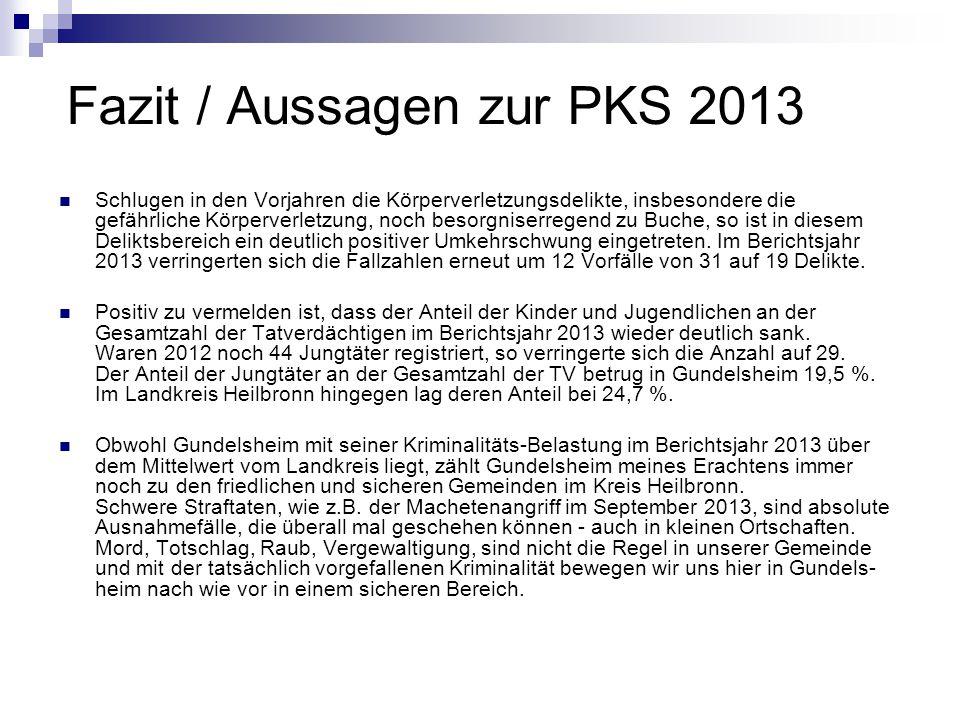 Fazit / Aussagen zur PKS 2013