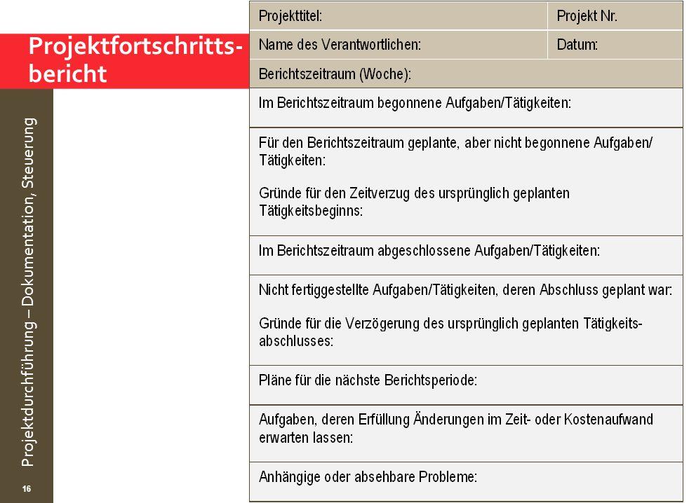 Projektfortschritts- bericht