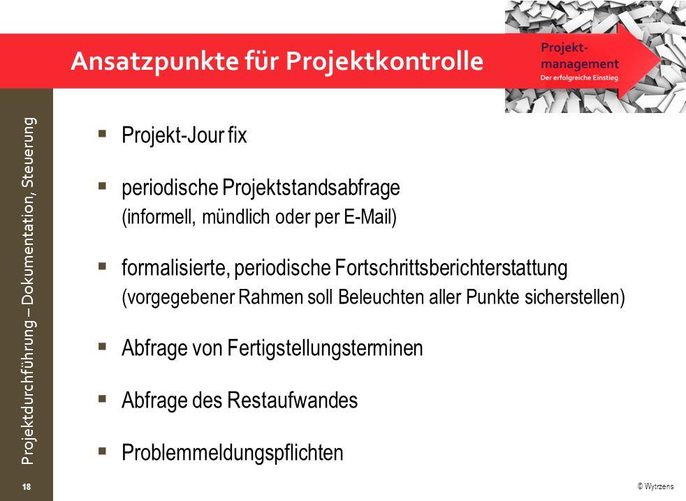 Ansatzpunkte für Projektkontrolle