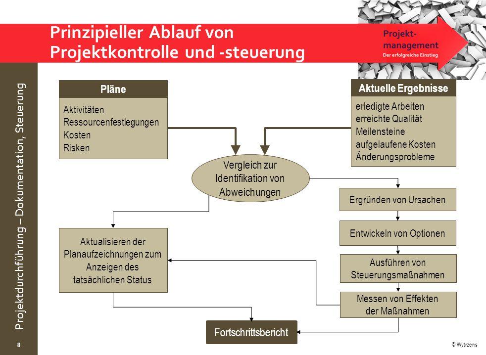 Prinzipieller Ablauf von Projektkontrolle und -steuerung
