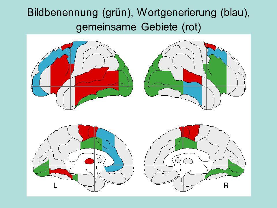 Bildbenennung (grün), Wortgenerierung (blau), gemeinsame Gebiete (rot)