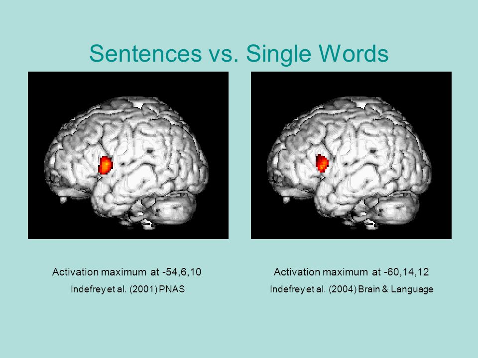 Sentences vs. Single Words