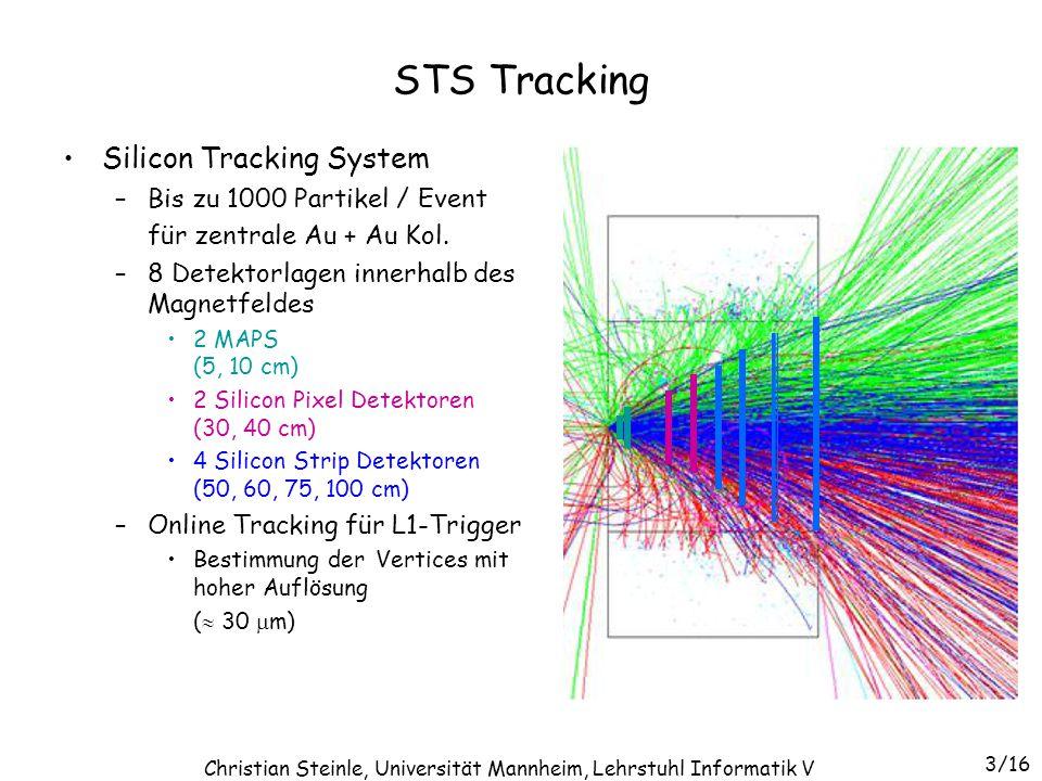 Christian Steinle, Universität Mannheim, Lehrstuhl Informatik V