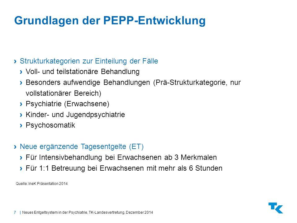 Grundlagen der PEPP-Entwicklung