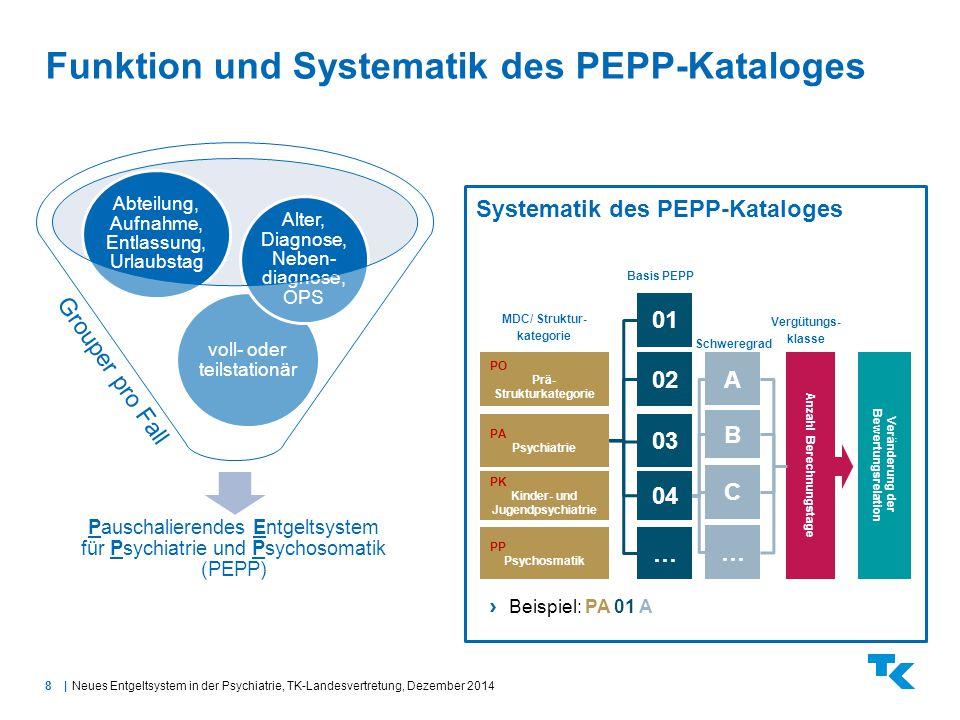 Funktion und Systematik des PEPP-Kataloges