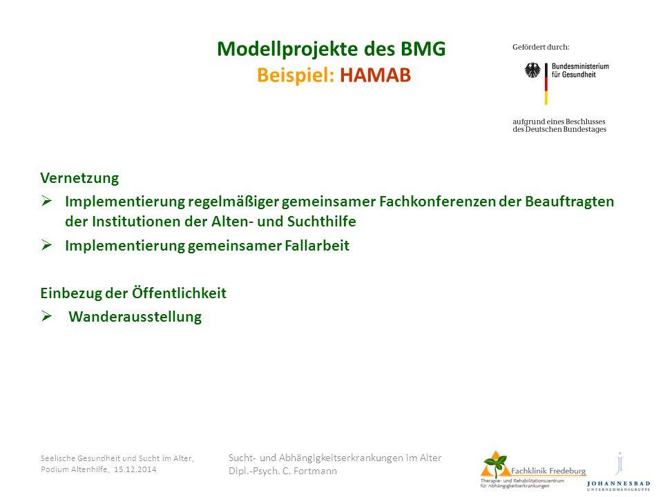 Modellprojekte des BMG Beispiel: HAMAB