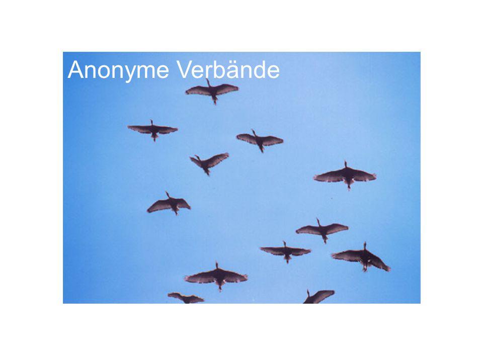 Anonyme Verbände