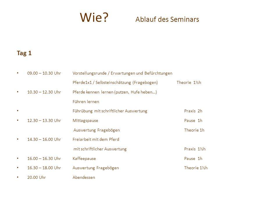 Wie Ablauf des Seminars