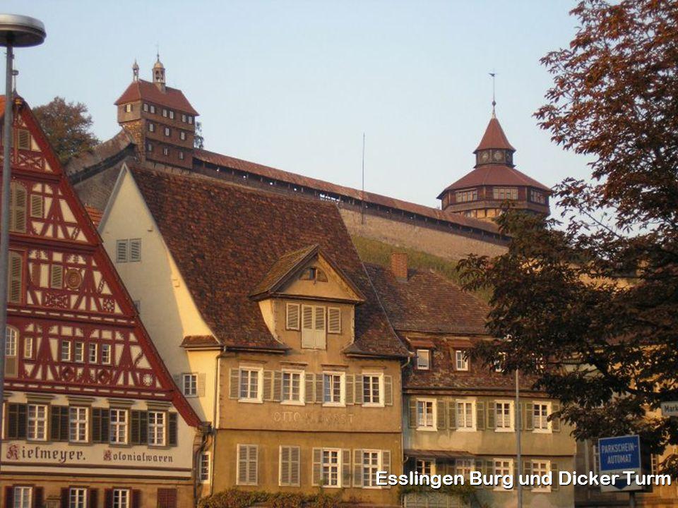 Esslingen Burg und Dicker Turm