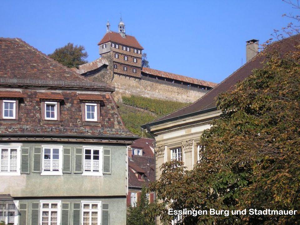 Esslingen Burg und Stadtmauer