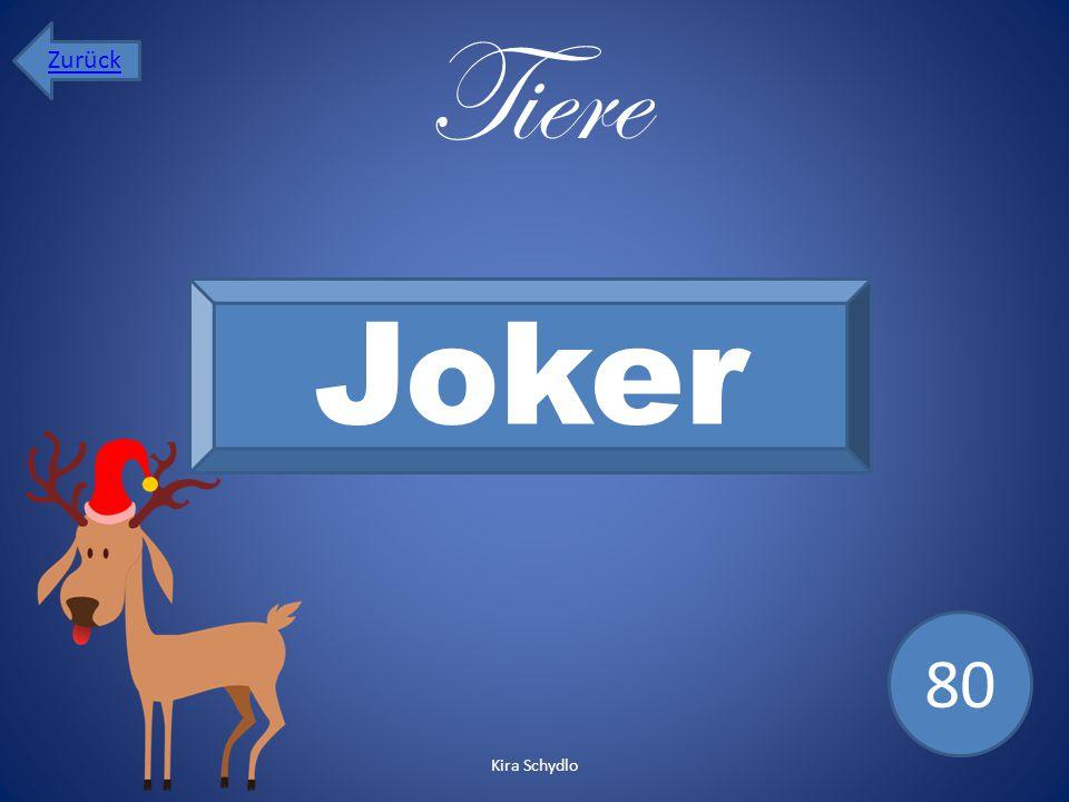 Zurück Tiere Joker 80 Kira Schydlo