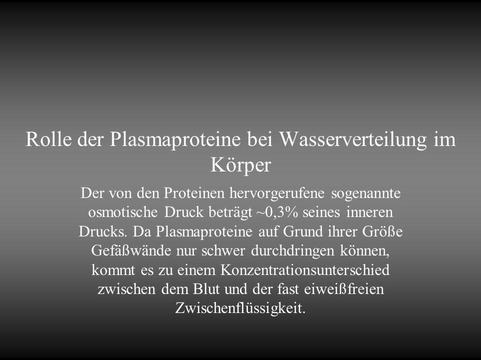 Rolle der Plasmaproteine bei Wasserverteilung im Körper