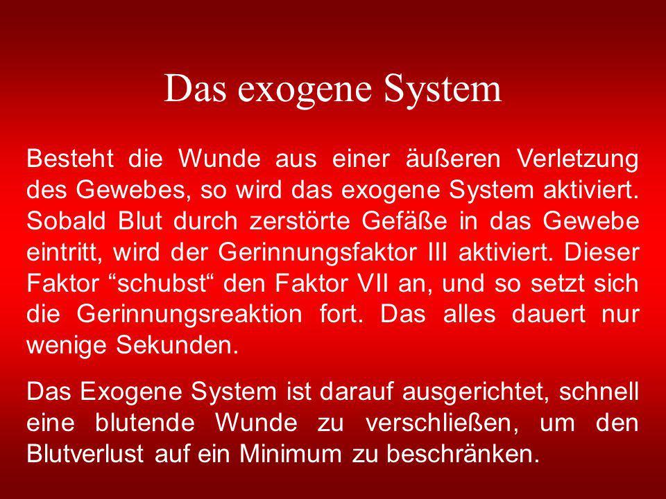 Das exogene System