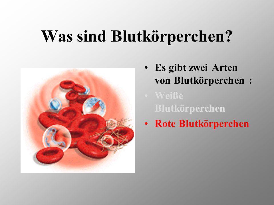 Was sind Blutkörperchen