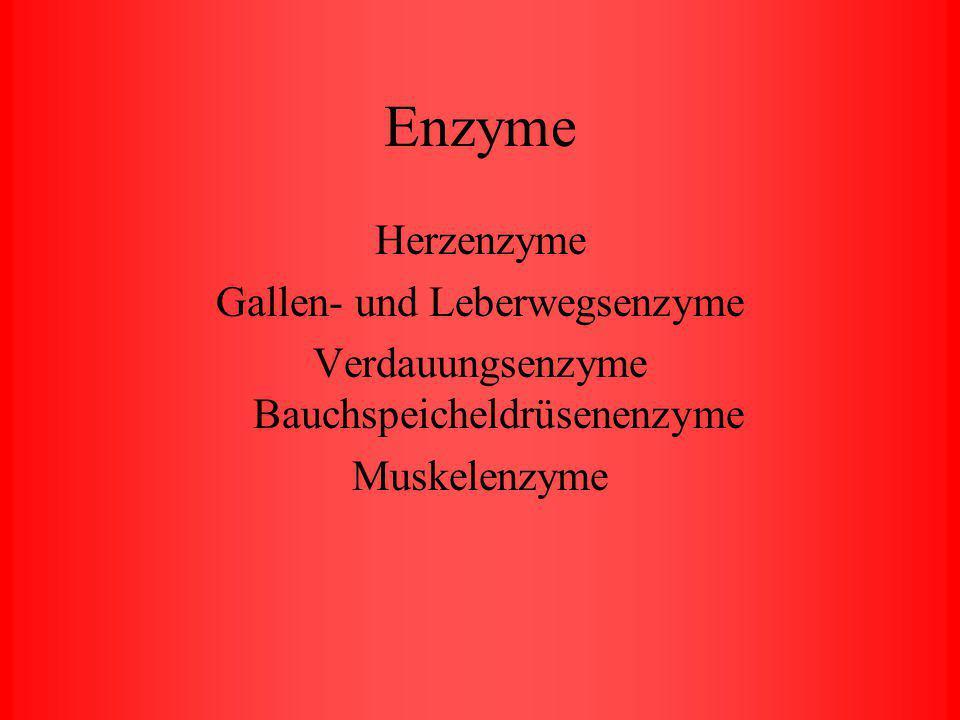 Enzyme Herzenzyme Gallen- und Leberwegsenzyme