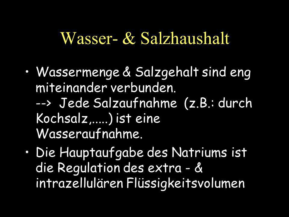 Wasser- & Salzhaushalt