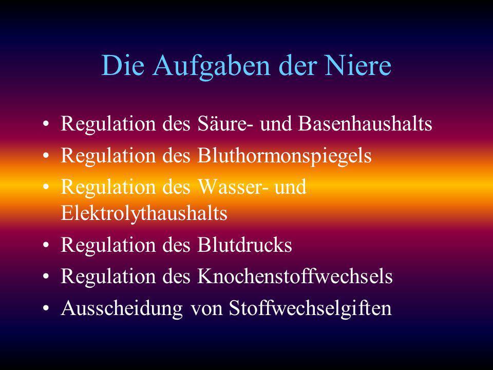 Die Aufgaben der Niere Regulation des Säure- und Basenhaushalts