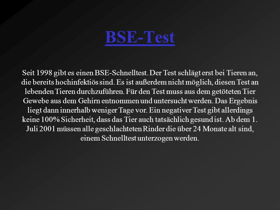BSE-Test