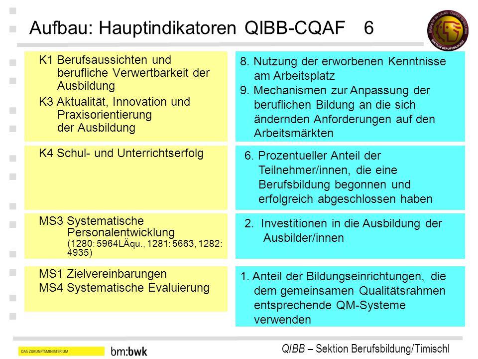 Aufbau: Hauptindikatoren QIBB-CQAF 6
