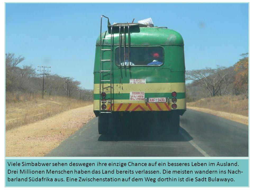 Viele Simbabwer sehen deswegen ihre einzige Chance auf ein besseres Leben im Ausland.