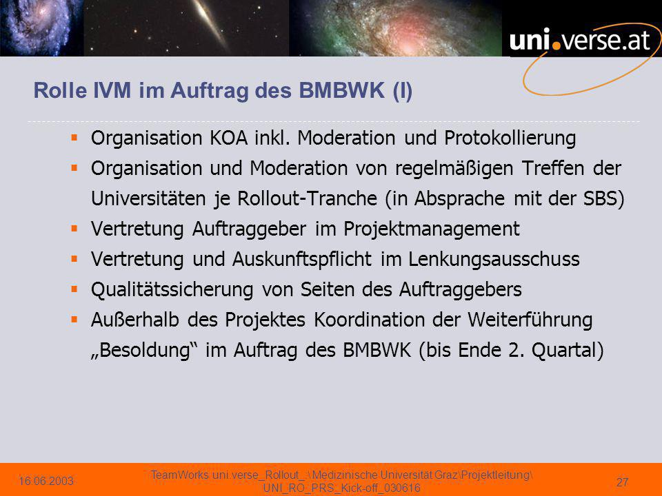 Rolle IVM im Auftrag des BMBWK (I)