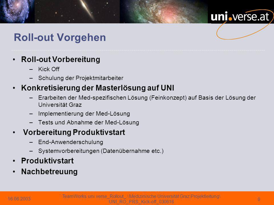 Roll-out Vorgehen Roll-out Vorbereitung