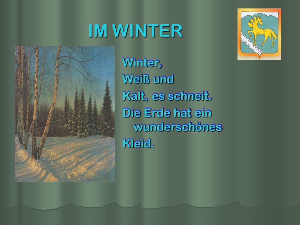 IM WINTER Winter, Weiß und Kalt, es schneit.