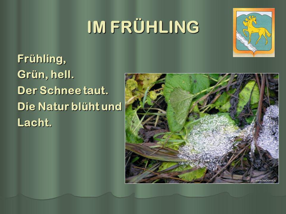 IM FRÜHLING Frühling, Grün, hell. Der Schnee taut. Die Natur blüht und