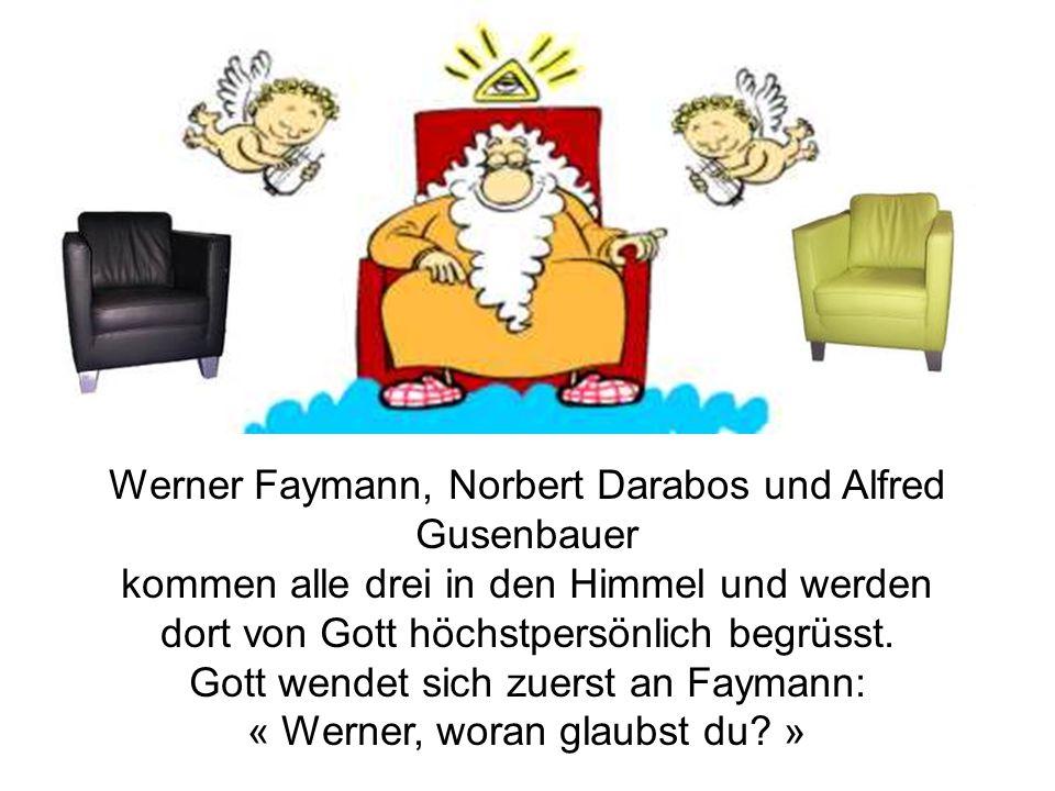Werner Faymann, Norbert Darabos und Alfred Gusenbauer
