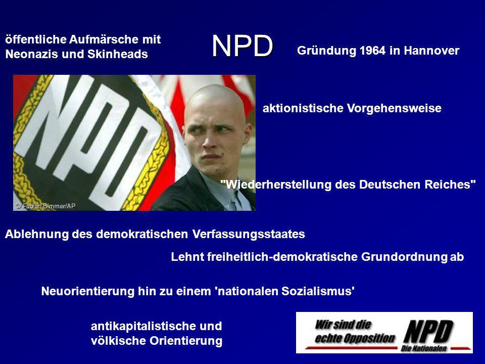 NPD öffentliche Aufmärsche mit Neonazis und Skinheads