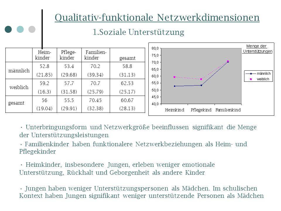 Qualitativ-funktionale Netzwerkdimensionen