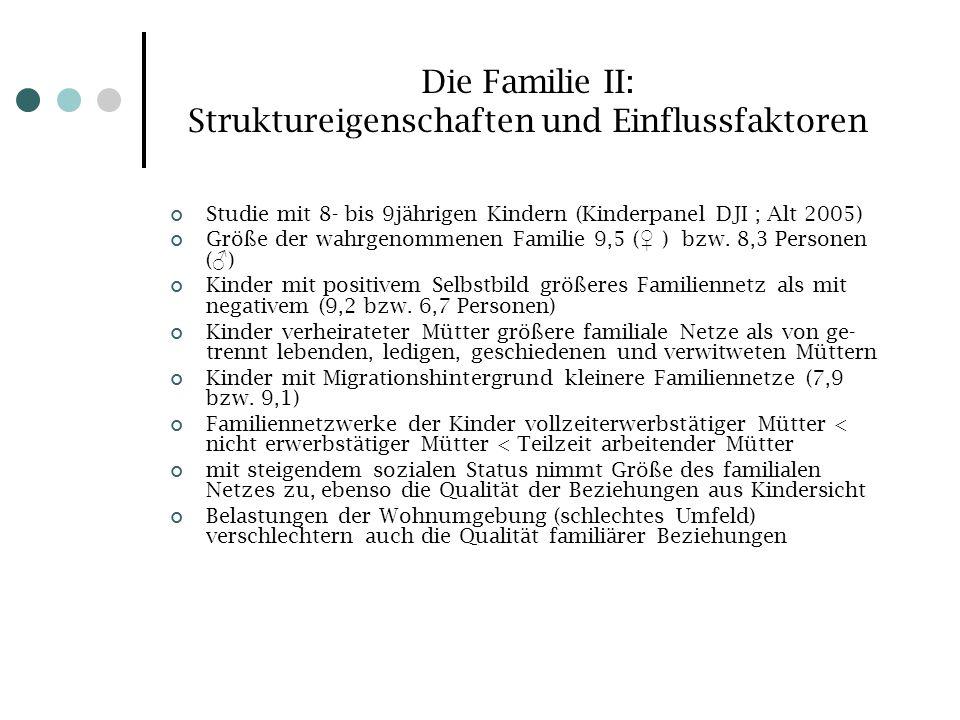 Die Familie II: Struktureigenschaften und Einflussfaktoren